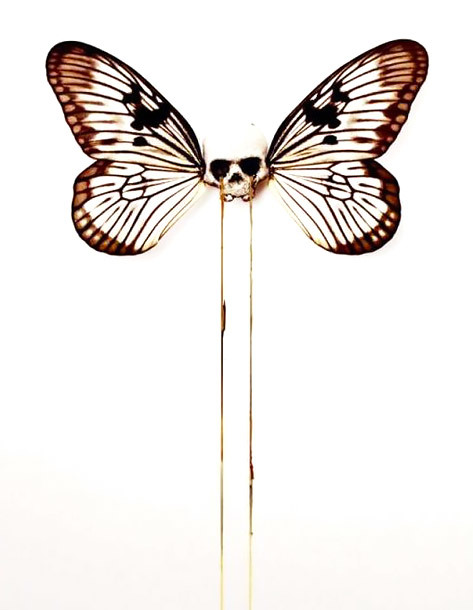 Unique Butterfly Skull Tattoo Design