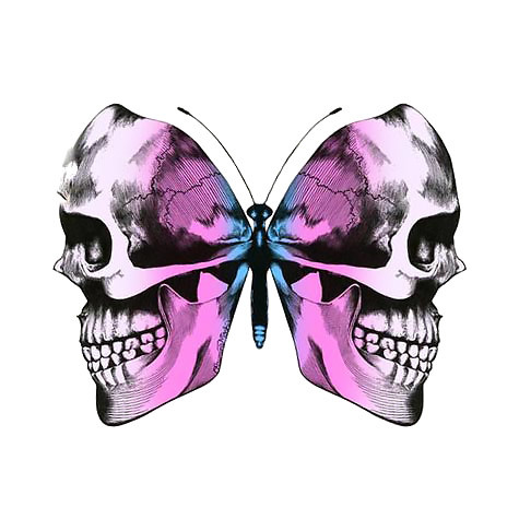 Cool Skull Butterfly Tattoo Design