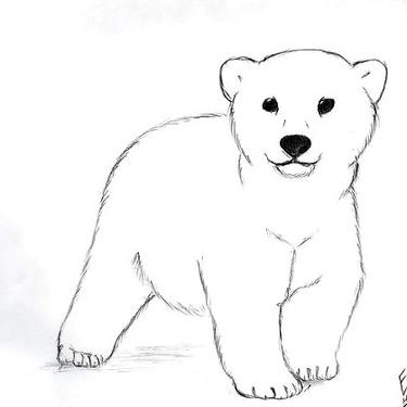 Cute Little Polar Bear Tattoo