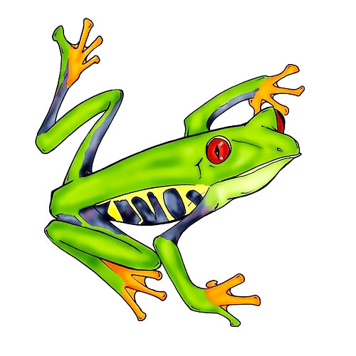 Red Eyed Tree Frog Tattoo Design