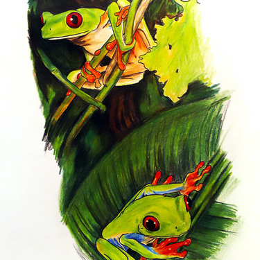 Red Eye Tree Frogs Tattoo