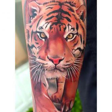 Beautiful Tiger Sleeve Tattoo