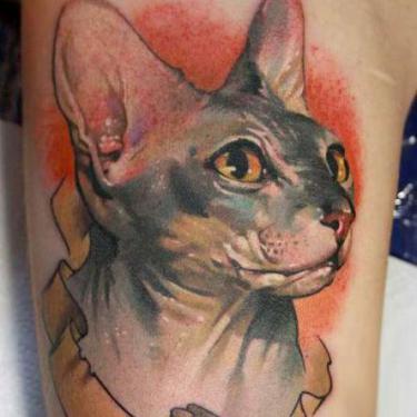 Sphynx Tattoo
