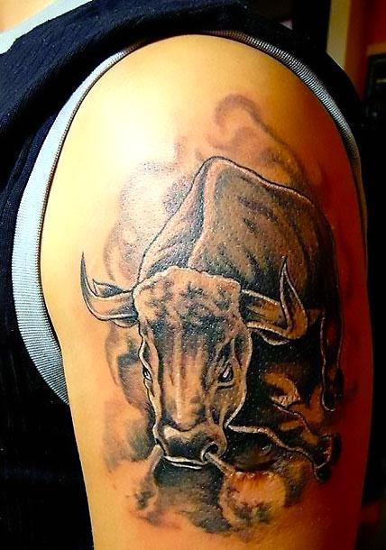 Bull Tattoos Tattoo Idea