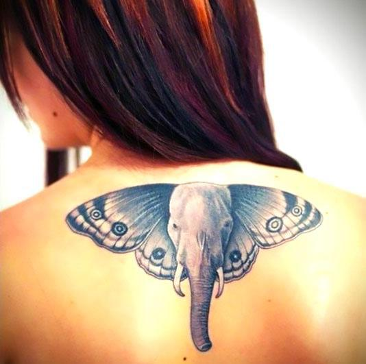 Butterfly Elephant Face Tattoo Idea