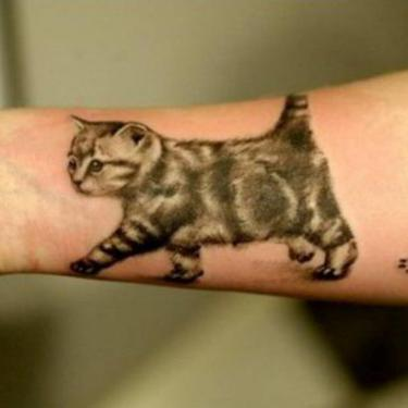 Walking Cat Tattoo