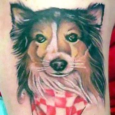 Collie Dog Potrait Tattoo