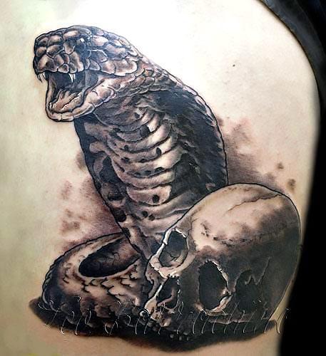 King Cobra and Skull Tattoo Idea