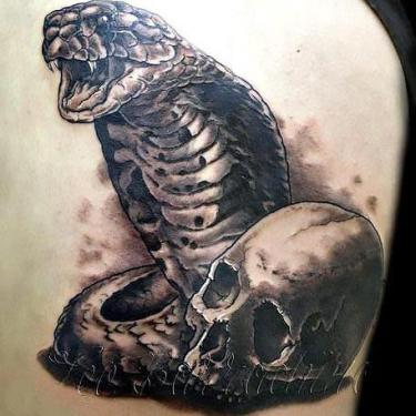 King Cobra and Skull Tattoo