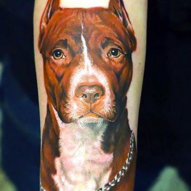 Pitbull Head Tattoo