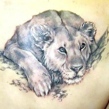 Cute Lioness on Shoulder Blade Tattoo