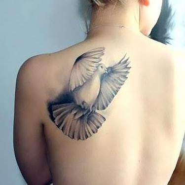 Dove for Girl Tattoo