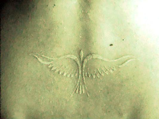 White Bird Tattoo Idea