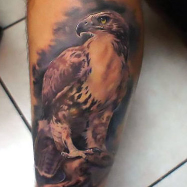 Hawk on Calf Tattoo