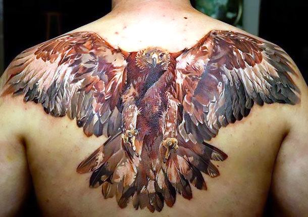Hawk on Back Tattoo Idea