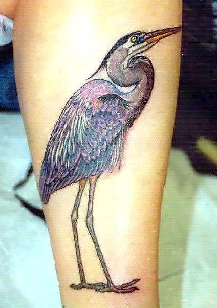 Heron on Shin Tattoo Idea