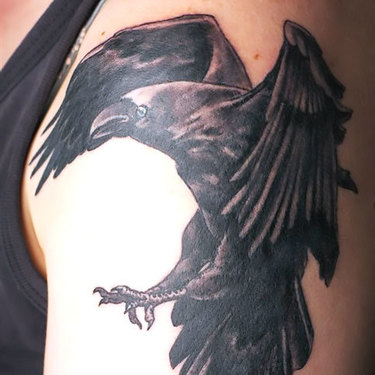 Nice Raven on Shoulder Tattoo