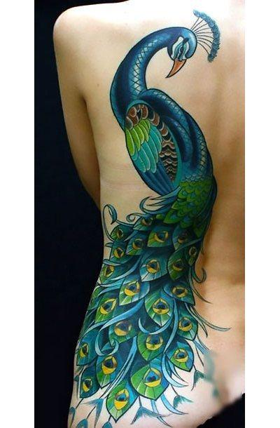 Peacock for Woman Tattoo Idea
