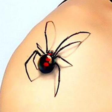 3d Spider on Shoulder Tattoo