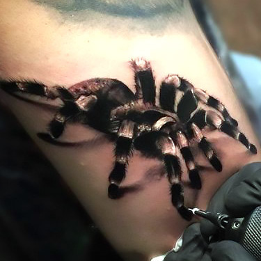 Amazing Tarantula Tattoo