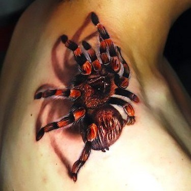 Best Tarantula Tattoo