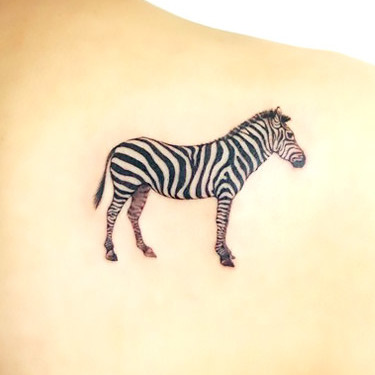 Simple Zebra Tattoo