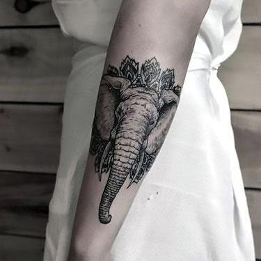 Amazing Elephant Head on Arm Tattoo