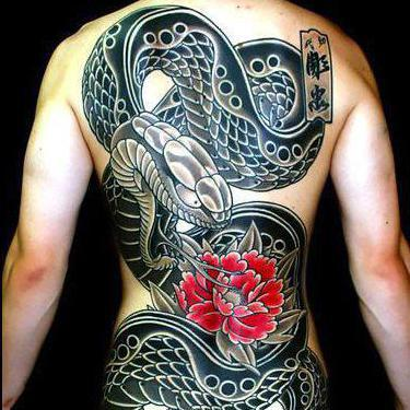 Amazing Japanese Snake on Back Tattoo