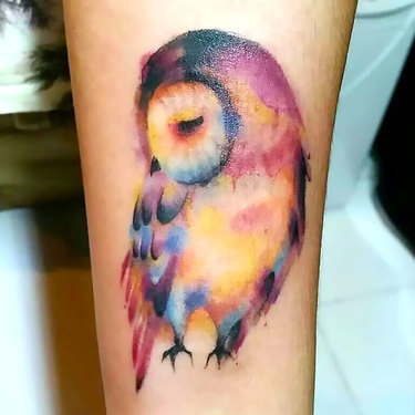 Shy Watercolor Owl Tattoo