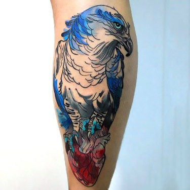 Shy Hawk Tattoo