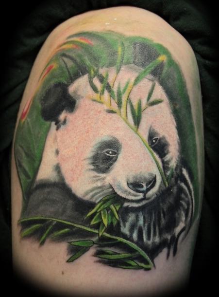 White Panda Bear Tattoo Design Tattoo Idea