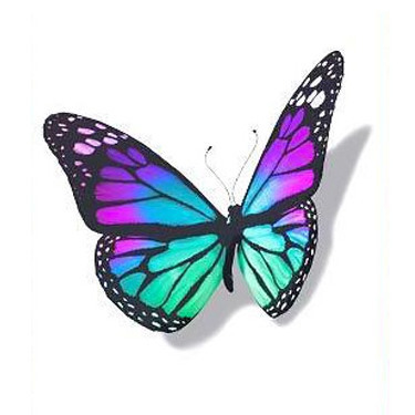 3D Colorful Butterfly Tattoo