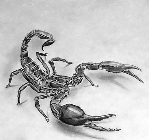 3D Scorpion Tattoo Design