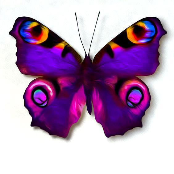 Amazing Colorful Purple Butterfly Tattoo Design