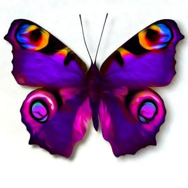 Amazing Colorful Purple Butterfly Tattoo
