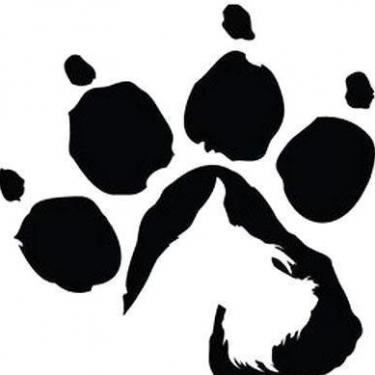 Amazing Dog Paw Print Tattoo
