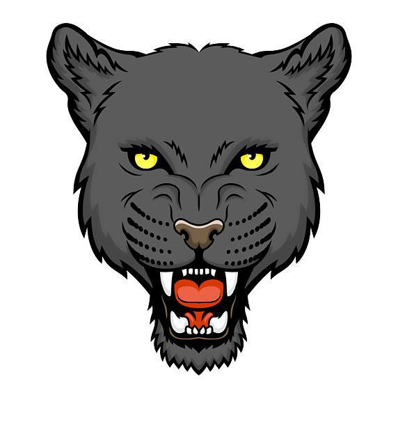 Awesome Panther Head Tattoo Design