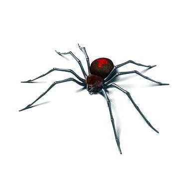 Black Widow 3D Spider Tattoo