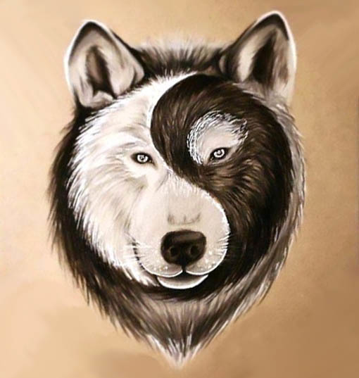 Best Yin Yang Wolf Face Tattoo Design