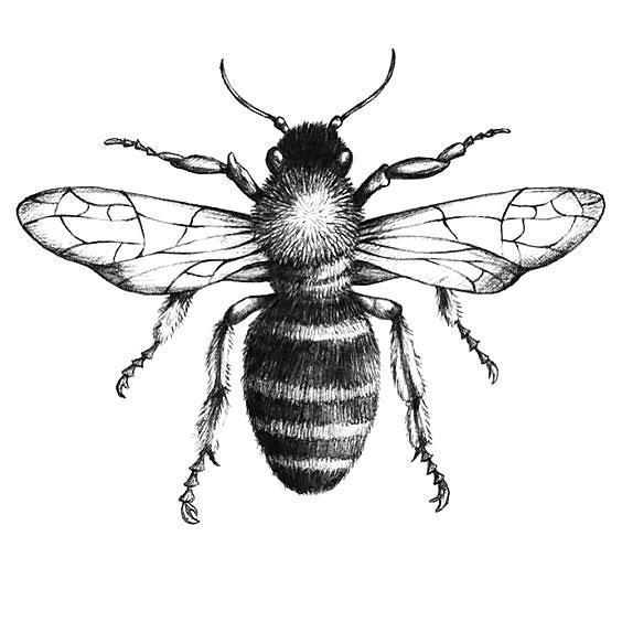 Black and Gray Bee Tattoo Design