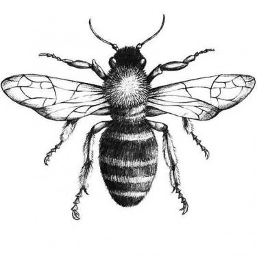 Black and Gray Bee Tattoo