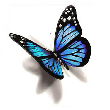 Blue 3D Butterfly Tattoo