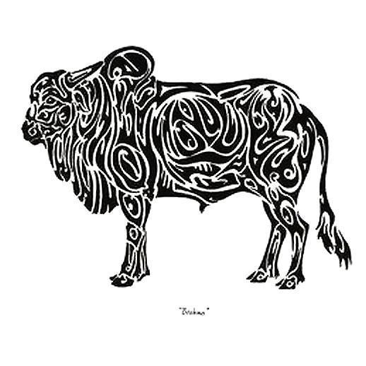 Brahma Bull Tattoo Design