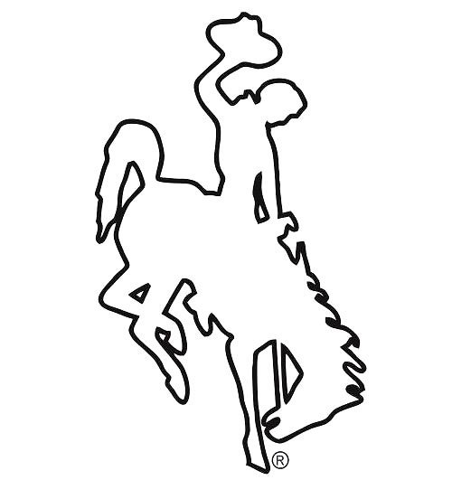 Bucking Horse Tattoo Design