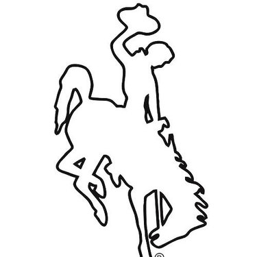 Bucking Horse Tattoo