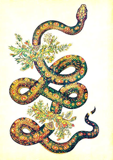 Colorful Snake Tattoo Design