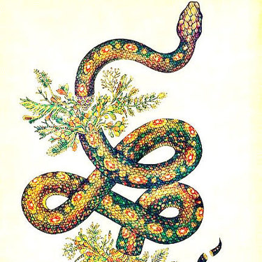 Colorful Snake Tattoo
