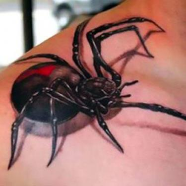 Awesome 3D Spider Tattoo