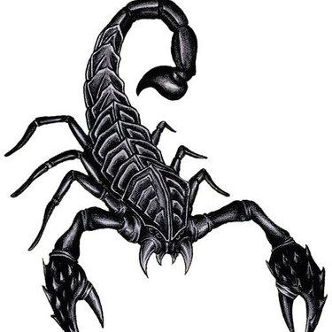 Cool Realistic Scorpion Tattoo