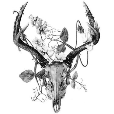 Deer Skull Tattoo